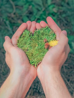 Green Heart Love Nature