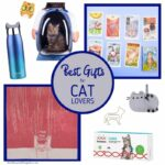 Best Gifts Cat Lovers